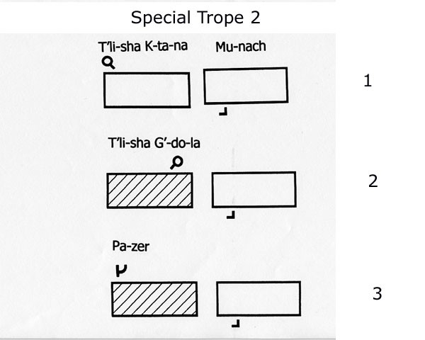Special Trope 2