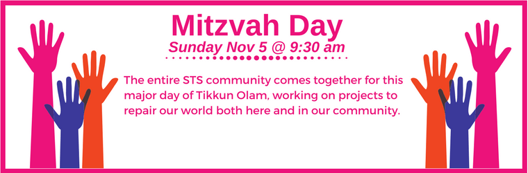 Mitzvah Day 2017 for webpage 1